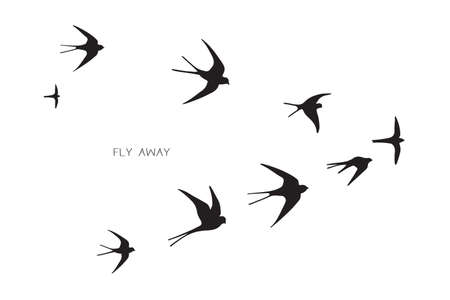 flock of birds silhouette swallow vector illustration