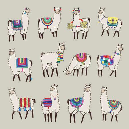 lama animal vector color set