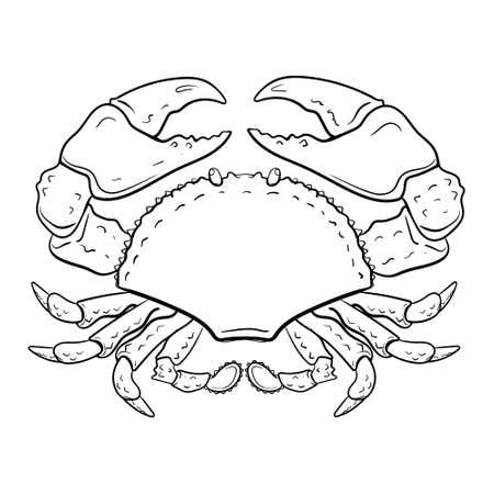 crab coloring page. Hand-drawn zodiac cancer . Horoscope symbol for your use. For tattoo art, coloring book. Coloring page for relax, antistress, vector illustration