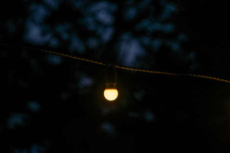 Decorative outdoor string lights hanging in the garden at night 版權商用圖片