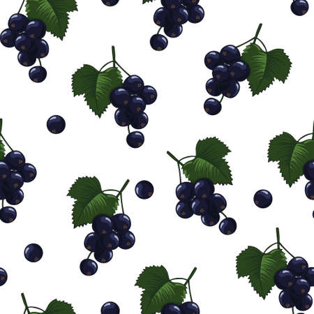 Natural delicious juicy organic berries seamless pattern with blackcurrants, vector color illustration on white background, isolated