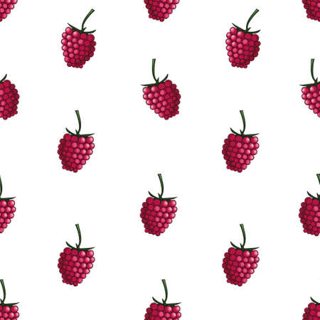 Natural delicious juicy organic berries seamless pattern with raspberries, vector color illustration on white background, isolated 向量圖像