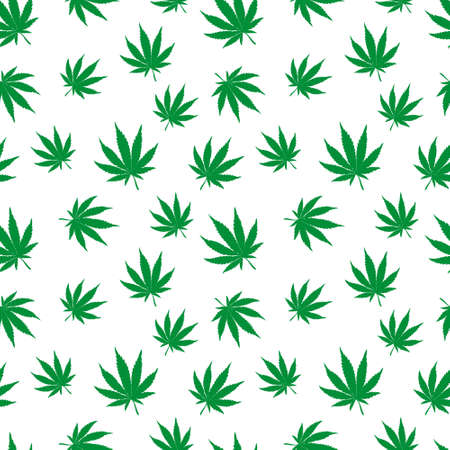 Cannabis plant vector seamless pattern. Simple stylized marijuana leaves on white background, vector illustration