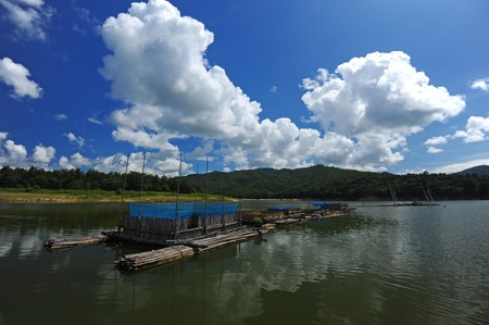 Coop in dam