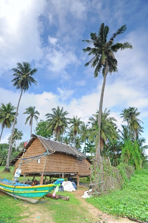 Fishing villages surrounded by coconut tree