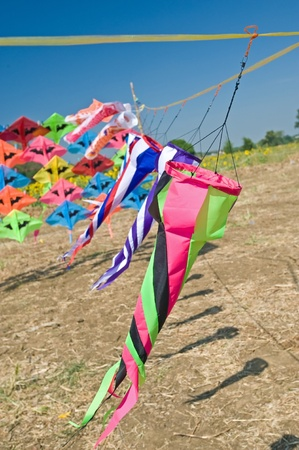 Group of colorful kite and sunflower field in background  photo