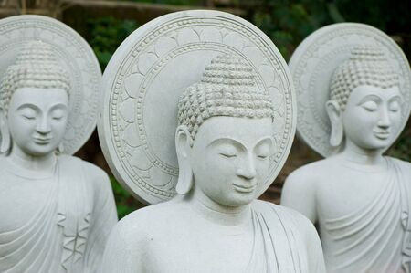 Group of buddha statue with flower  photo