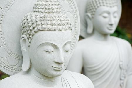 Two buddha statue  photo