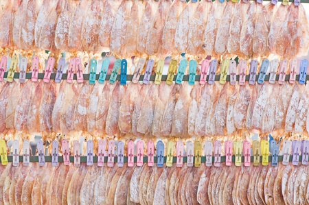 Dried Squid showing for sell photo