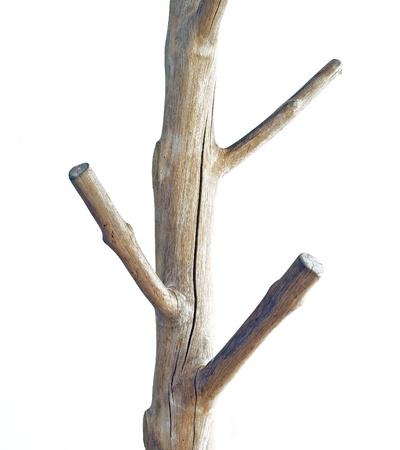 coat rack: Wooden Coat Rack Isolated on White Background