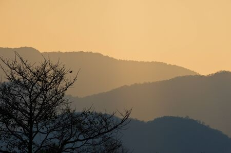 Silhouette tree with sunset over mountain Stock Photo