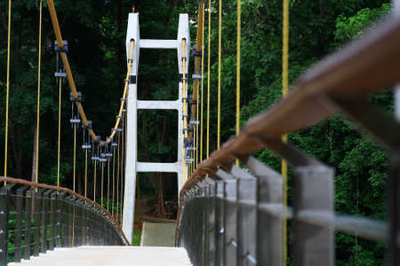 taking the plunge: Cable  Hanging Bridge