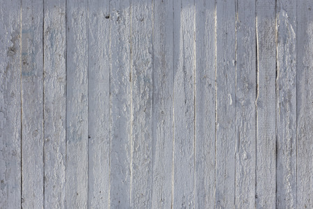 painted wood: White old painted wooden background texture with vertical parallel boards, woodgrain and copy space, full frame.