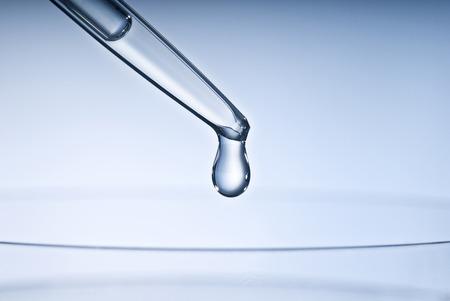 pipeta: Pipeta con gota y la placa de Petri