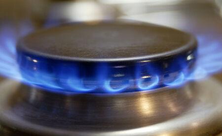 gas cooker: Flamme eines Gasherdes, Llama de una cocina de gas