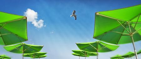 Parasols op het strand met blauwe hemel en zeemeeuw