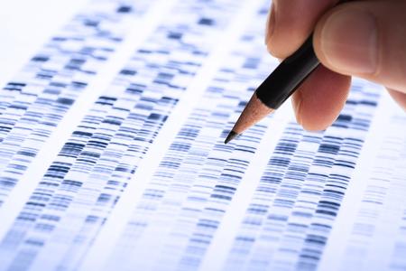 El científico analiza el gel de ADN utilizado en genética, medicina forense, descubrimiento de fármacos, biología y medicina. Foto de archivo