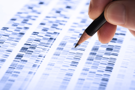 Scientist analyzes DNA gel used in genetics, forensics, drug discovery, biology and medicine.