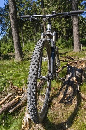 Mountain bike in the woods with focus on tire and profile of the front wheel