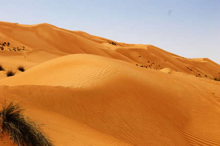 landscape view of dune sands at wahiba sands muscat oman