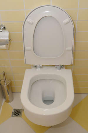 toilet seat: Toilet seat  Stock Photo