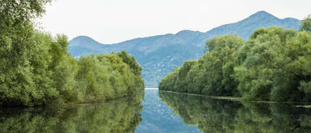 River surrounded by trees leading into lake with mountain in background