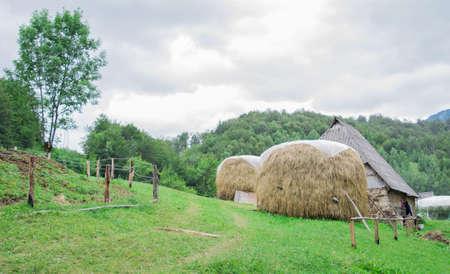 bales: Bales of hay