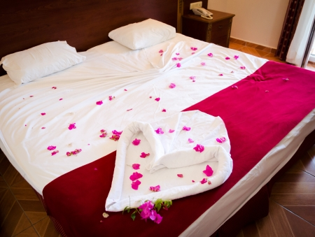 Double Bed of Red Roses photo