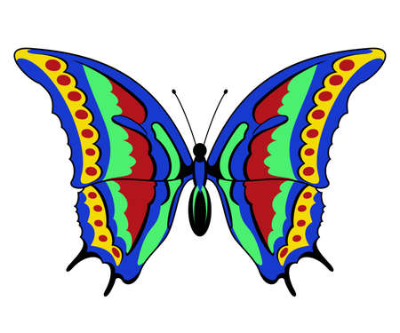 Vector butterfly on a white background  clip-art Çizim