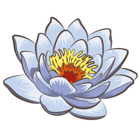 flowers background: Flor de loto Vectores