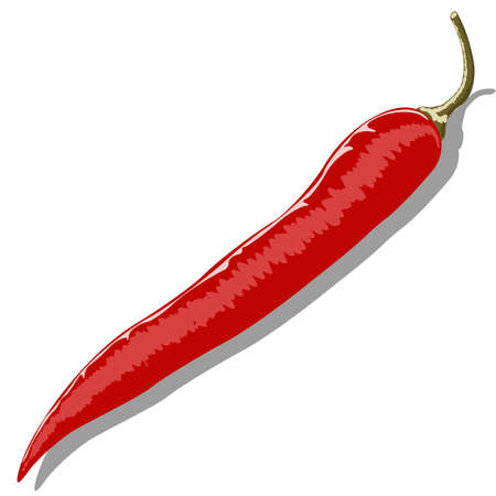 Red hot pepper isolated of white background Illustration