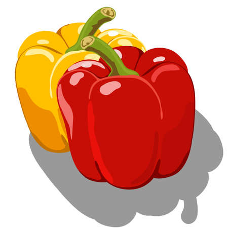 Sweet pepper isolated on white background Vector