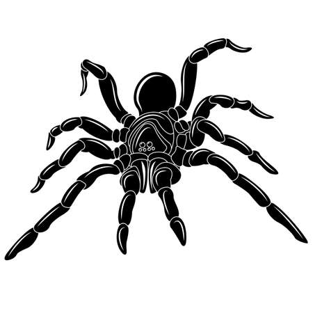 Spider tattoo - illustration. clip art