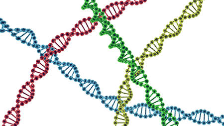 cromosoma: Chromosome . 3D render isolated