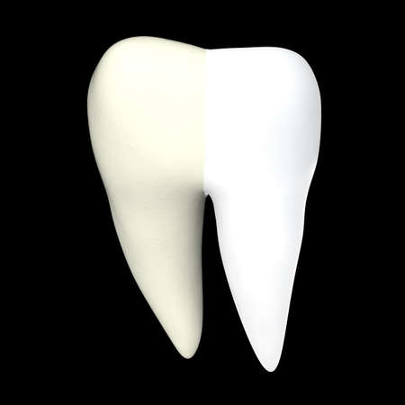 Human tooth 3D render isolated Stock Photo - 72264108