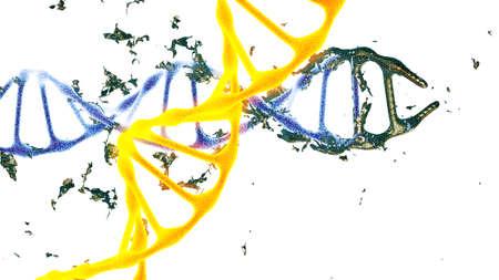 Chromosome . 3D render isolated