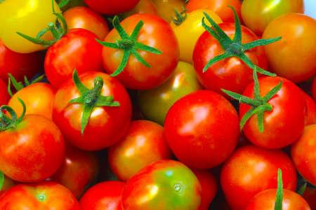 Many fresh red tomatoes Stock Photo