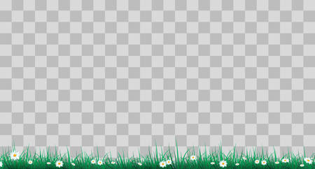 Green grass on a transparent background. glade in the forest grass. Chamomiles on the glade. 版權商用圖片 - 118707606