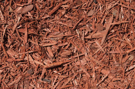 Red cedar wood chips background