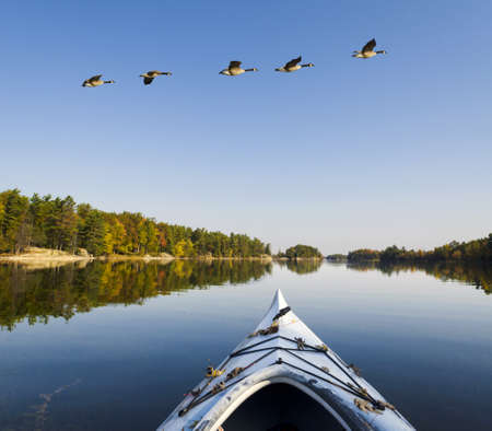 Tranquil lake in autumn with a reflection of the wilderness island with kayak in the foreground and geese flying above photo