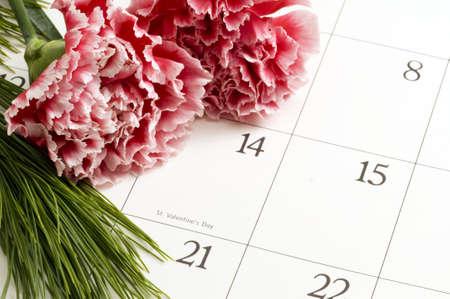 Twee Roze Anjers op Valentijnsdag op een kalender Stockfoto