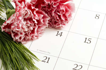 Two Pink Carnations on Valentines Day on a calender