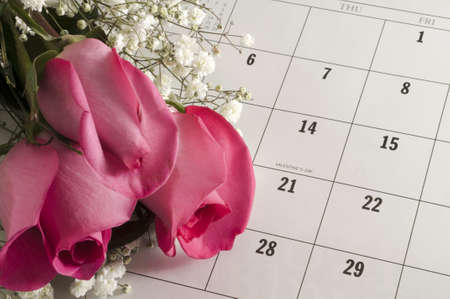 almanac: Pink roses on a calender open to Valentines Day