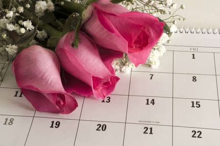 almanac: Three pink roses on a calender open to Valentines Day. Stock Photo