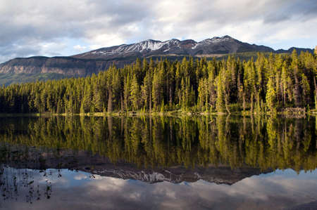 Stunning reflection on Honeymoon Lake located in Jasper National Park