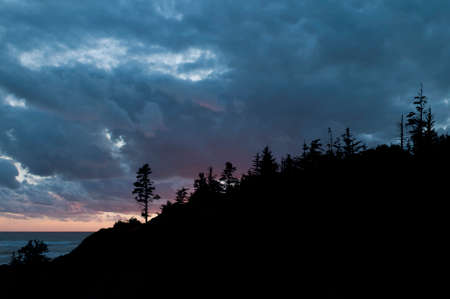 enrage: Silhouette of the treeline at Cape Enrage in New Brunswick with intense clouds and sunrise colors in the background