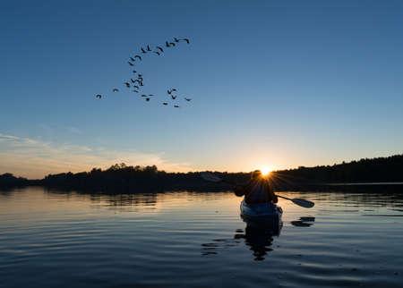 Vrouw kajakken bij zonsondergang met een kudde ganzen op zoek om te landen op de noordelijke meer Stockfoto
