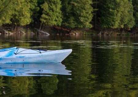 Kajak op een rustige baai in de zomer met een bos op de achtergrond