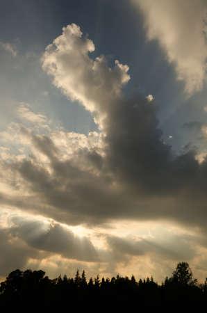 Zonlicht door de wolken in de schemering met silhouet groenblijvende bomen op de voorgrond Stockfoto