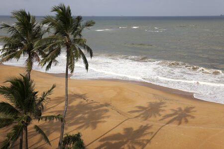colombo: Tropical Beach and Palms - Colombo, Sri Lanka